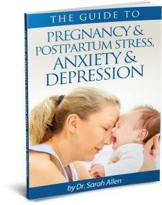 THE GUIDE TO PREGNANCY & POSTPARTUM STRESS, ANXIETY & DEPRESSION ebook